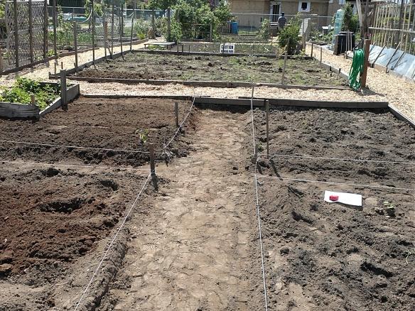 My Community Garden Plot