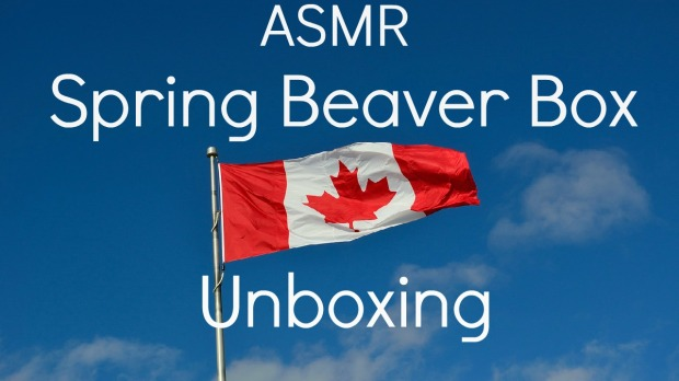 Spring Beaver Box